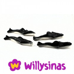 Ballenas Orcas de Fini